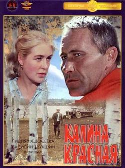 : Kalina czerwona