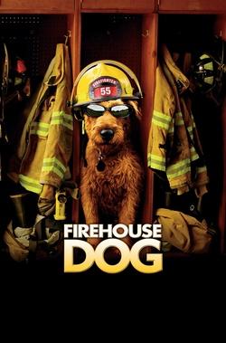 : Strażacki pies