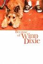 Dzięki tobie, Winn-Dixie