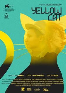 Żółty kot