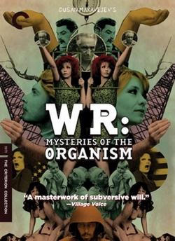 : The Organization