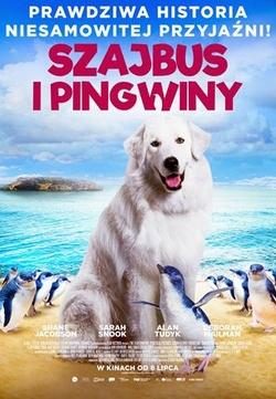 : Szajbus i pingwiny