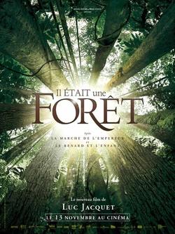: Był sobie las