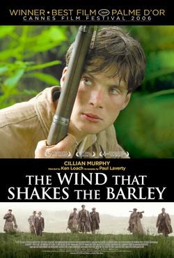 : Wiatr buszujący w jęczmieniu