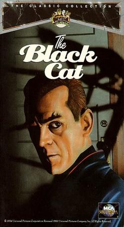 : Czarny kot
