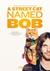 Kot Bob i ja