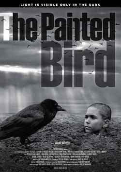 : Malowany ptak