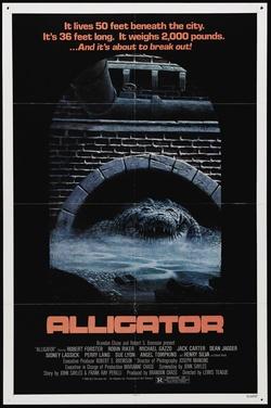 : Alligator