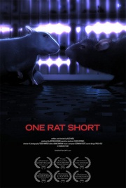 : One Rat Short