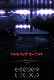 : One Rat Short