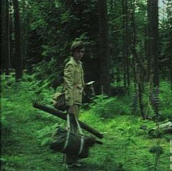 : Lato leśnych ludzi