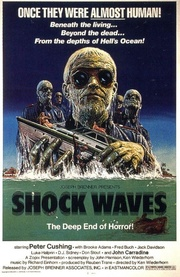 : Shock Waves