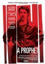 Prorok