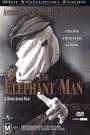 Człowiek słoń