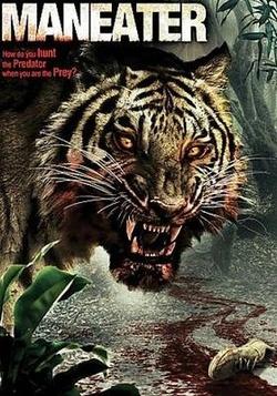 : Tygrys ludojad