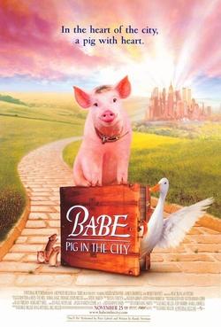 : Babe - świnka w mieście