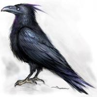 Crow86
