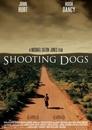 Strzelając do psów