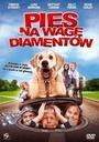 Pies na wagę diamentów
