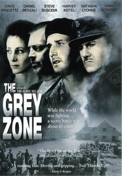 : The Grey Zone