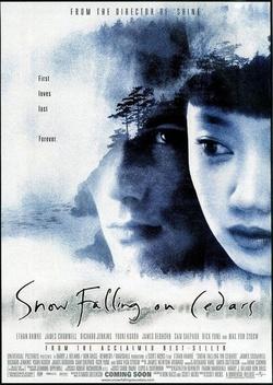 : Cedry pod śniegiem