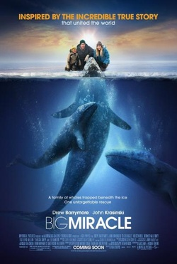 : Na ratunek wielorybom