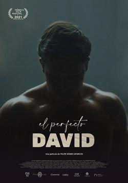 : Doskonały Dawid