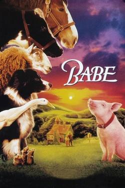: Babe - świnka z klasą