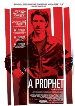 : Prorok