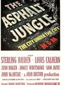 Asfaltowa dżungla