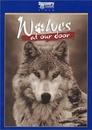 Wilki u naszych drzwi