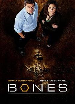 : Kości
