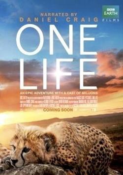 : One Life