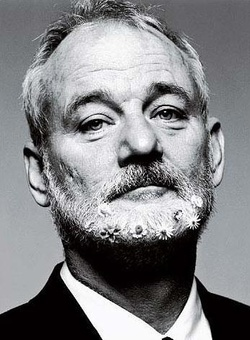 Plakat: Bill Murray