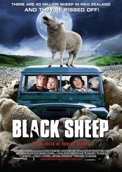 :  Czarna owca