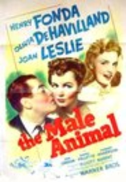 : The Male Animal