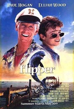 : Flipper