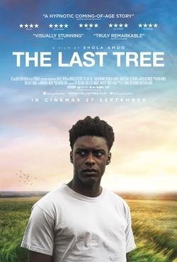 : Ostatnie drzewo