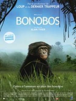 : Bonobos