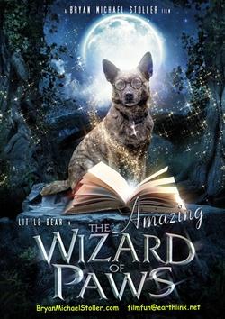 : Oswald - magiczny pies
