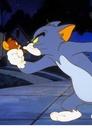 Nowe przygody Toma i Jerry'ego