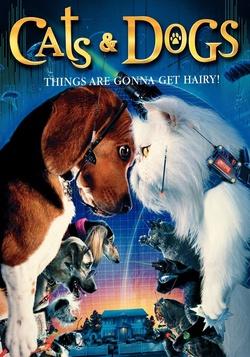 : Psy i koty