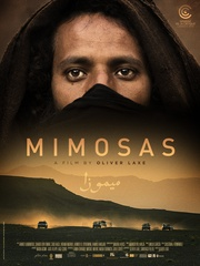 : Mimosas