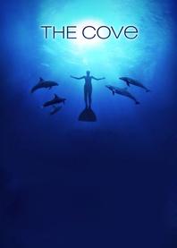 Zatoka delfinów